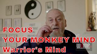 FOCUS YOUR MONKEY MIND Warrior's Mind