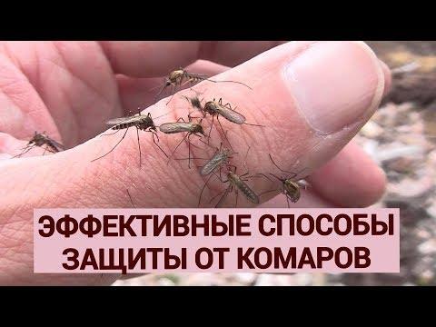 Вопрос: Как применять муравьиную кислоту для отпугивания комаров?