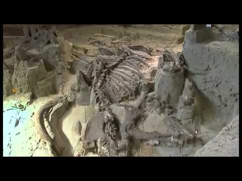 Tour of The Mammoth Site in Hot Springs, South Dakota