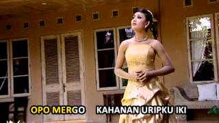 Download Mp3 Dian Kusuma - Cidro   Lyric Video