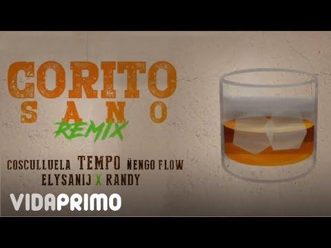 Tempo x Cosculluela x Ñengo Flow x Randy x Elysanij - Corito Sano (Remix)