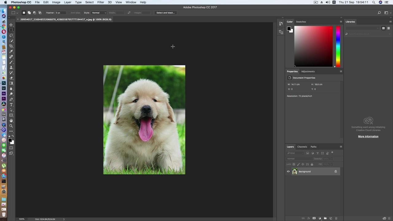 Adobe Photoshop CC 2017 On macOS High Sierra Golden Master 10 13