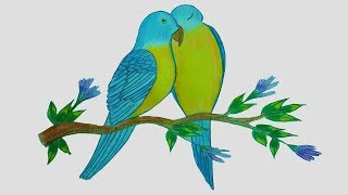 How To Draw Love birds | Drawing LoveBird | Toma