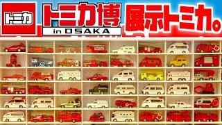 パトカー・救急車・消防車が大量展示☆トミカ博inOSAKA 実車や他にもバスやはたらくくるま・現行ナインナップなど☆デカパトロールカーから一斉発車!