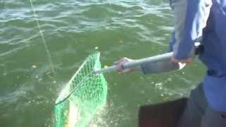Salmon Fishing in North Dakota