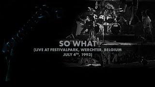Metallica: So What (Werchter, Belgium - July 4, 1993)