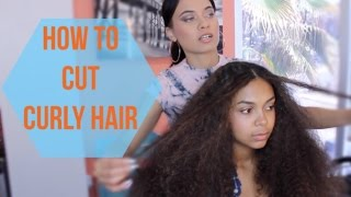 How to Cut Curly Hair!