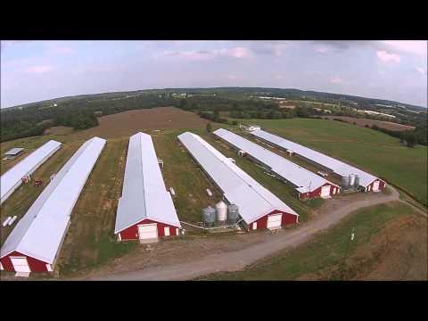 Poultry Farm For Sale Cullman County, AL