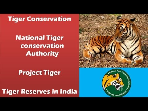 Tiger conservation: National tiger conservation authority, Tiger reserves, Project tiger