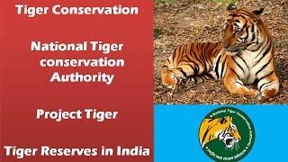 Tiger conservation: National tiger conservation authority, Tiger reserves, Project tiger