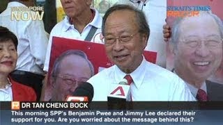 Opposition party backs ex-PAP man