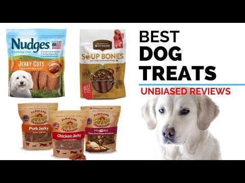 10-best-dog-treats-2020-|-buying-guide-&-review---dog-treats