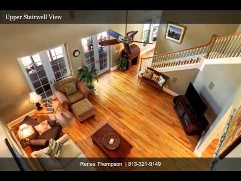 South Tampa Treasure | Renee Thompson