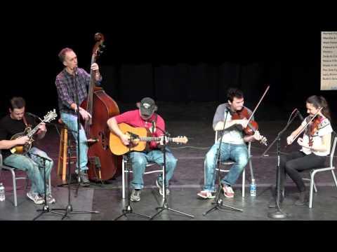 The Virginia Luthiers - Goodbye Liza Jane