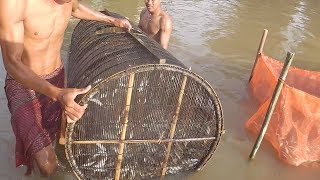Amazing! man catches a lot of fish using bamboo trap