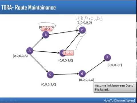 Ad hoc routing protocols tora