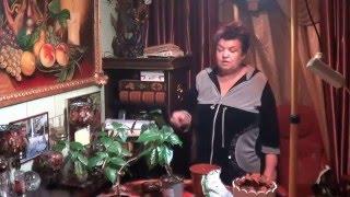 Правильный Уход За  Гибискусом ( Китайской Розой). Уход  Зимой и Летом(китайская роза или гибискус есть во многих домах, но правильно ли ухаживают за нам, чтобы растение порадова..., 2015-12-21T16:56:37.000Z)