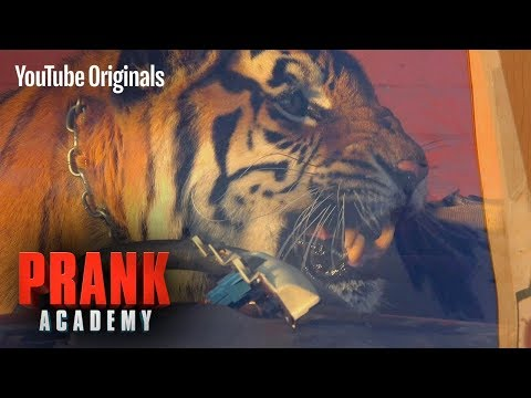 REAL TIGER PRANK!!! Ft. VITALY   Prank Academy   Episode 9