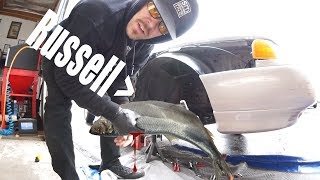 i-caught-myself-a-russell-fish-white-rider-73
