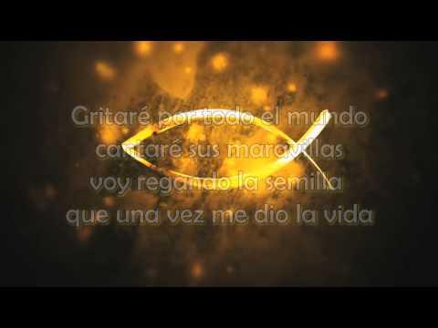 Mi Talento -  David Mendez