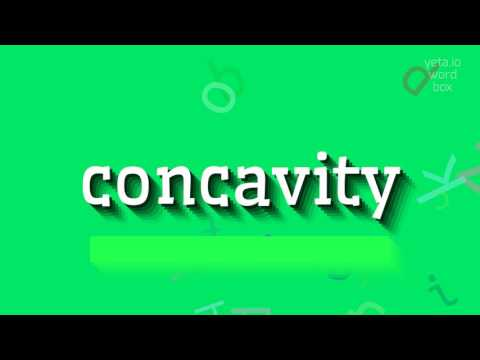 """How to say """"concavity""""! (High Quality Voices)"""
