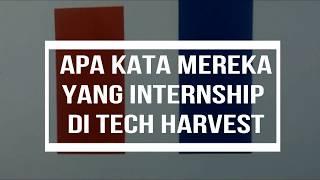 Internship @ Tech Harvest