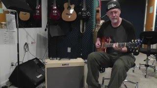 Roland Blues Cube Artist Demo