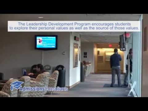 Yale School of Management Admissions Profile