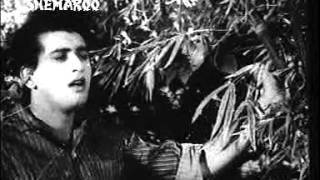 -JAB CHHAYE KABHI SAAWAN KI GHATA -TALAT-RAJA MEHDI ALI KHAN - BABUL (RESHMI RUMAL 1961)