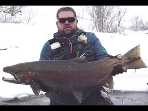 Salmon steelhead salmon river pulaski ny drift boat spin for York river fishing report