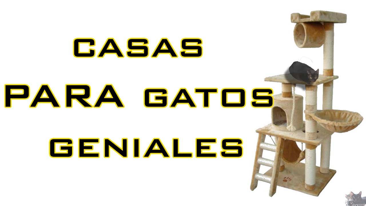15 casas para gatos super geniales hd youtube - Casas para gatos baratas ...