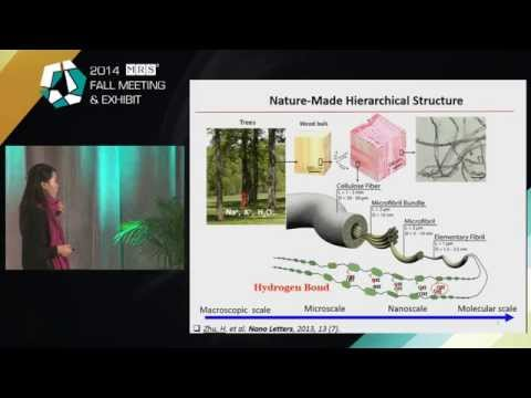 Wood Fibers in Technology: Technical Report from Materials Research Society Convention