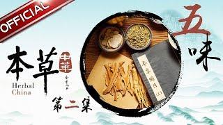 【中医药纪录片】《本草中华》第2集:五味【东方卫视官方高清】