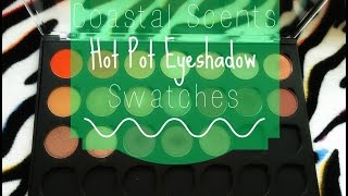 Coastal Scents Hot Pot Eyeshadows | Swatch Video