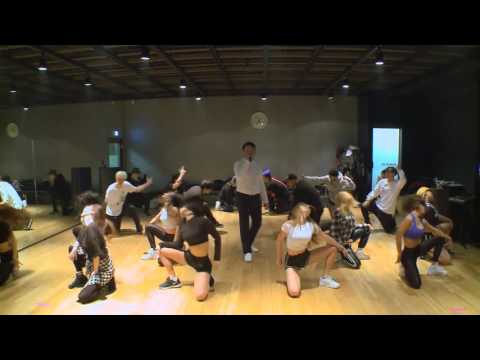 PSY - DADDY Dance practice mirror