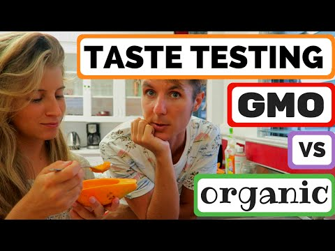 GMO VS ORGANIC PAPAYA TASTE TESTING