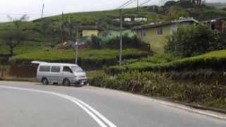 Downhill Cycling - Pattipola NuwaraEliya Kandy Bike ride