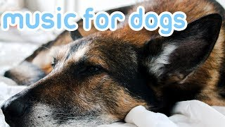 15 HOURS of Deep Stress Relief Dog Music! Music to Help Your Dog Sleep