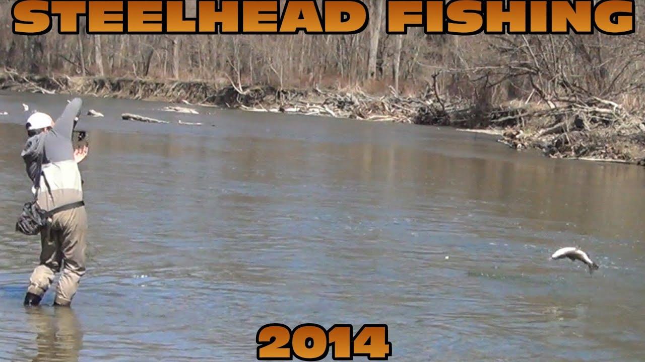 Steelhead fishing erie 2014 youtube for Erie pa steelhead fishing report