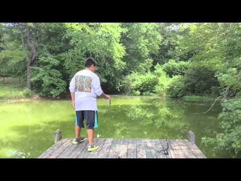 Late Summer Bass Fishing | EverythingOutdoors