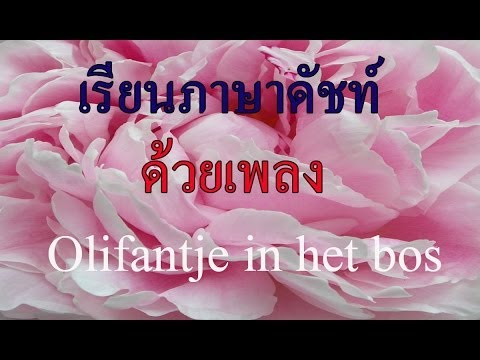 Thai singing Dutch song Olifantje in het bos(13/14)