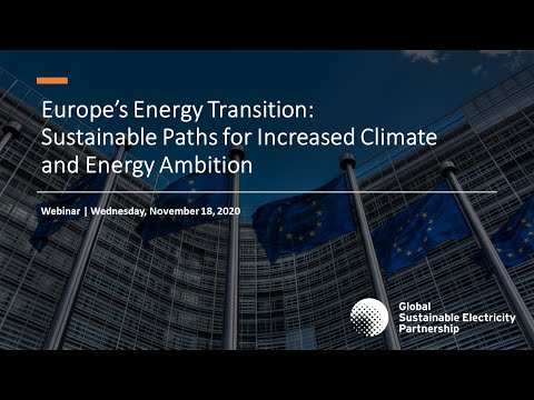 """Webinar """"Europe's Energy Transition: Sustainable Paths for Increased Climate and Energy Ambition"""""""