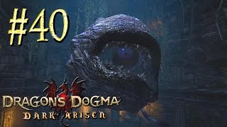 Скачать Dragon S Dogma Dark Arisen Бихолдер Прохождение 40