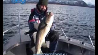 Морская рыбалка в Норвегии!.