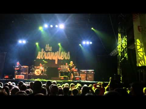 The stranglers verviers concert live
