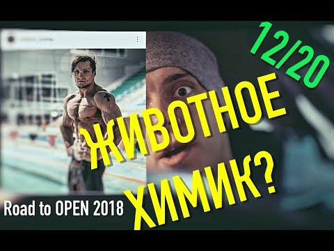 Животное из Иркутска ХИМИЧИТ/ Андрей Сухарев/ Моё мнение