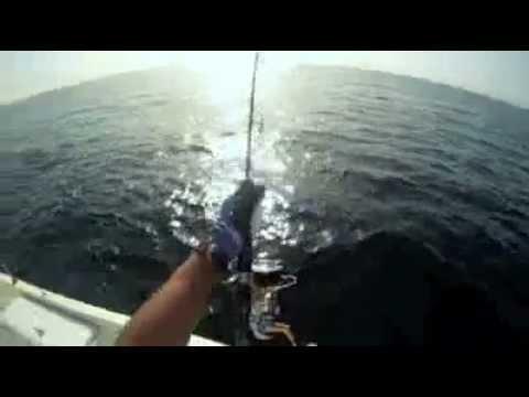 Video Mancing Jigging