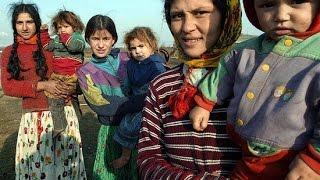 Одновременно беременеют дочь, мать и бабушка  Как цыгане живут на соцвыплаты