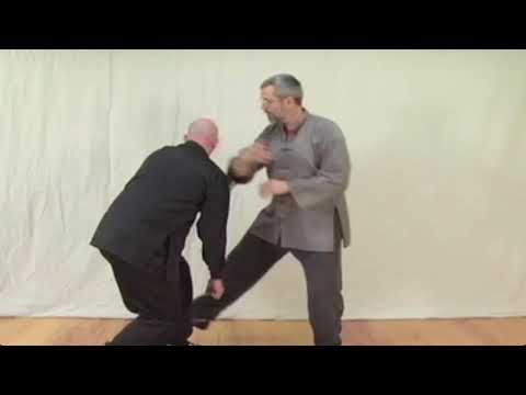 Dim Mak Techniques: Pressure Point Knockouts of Tai Chi