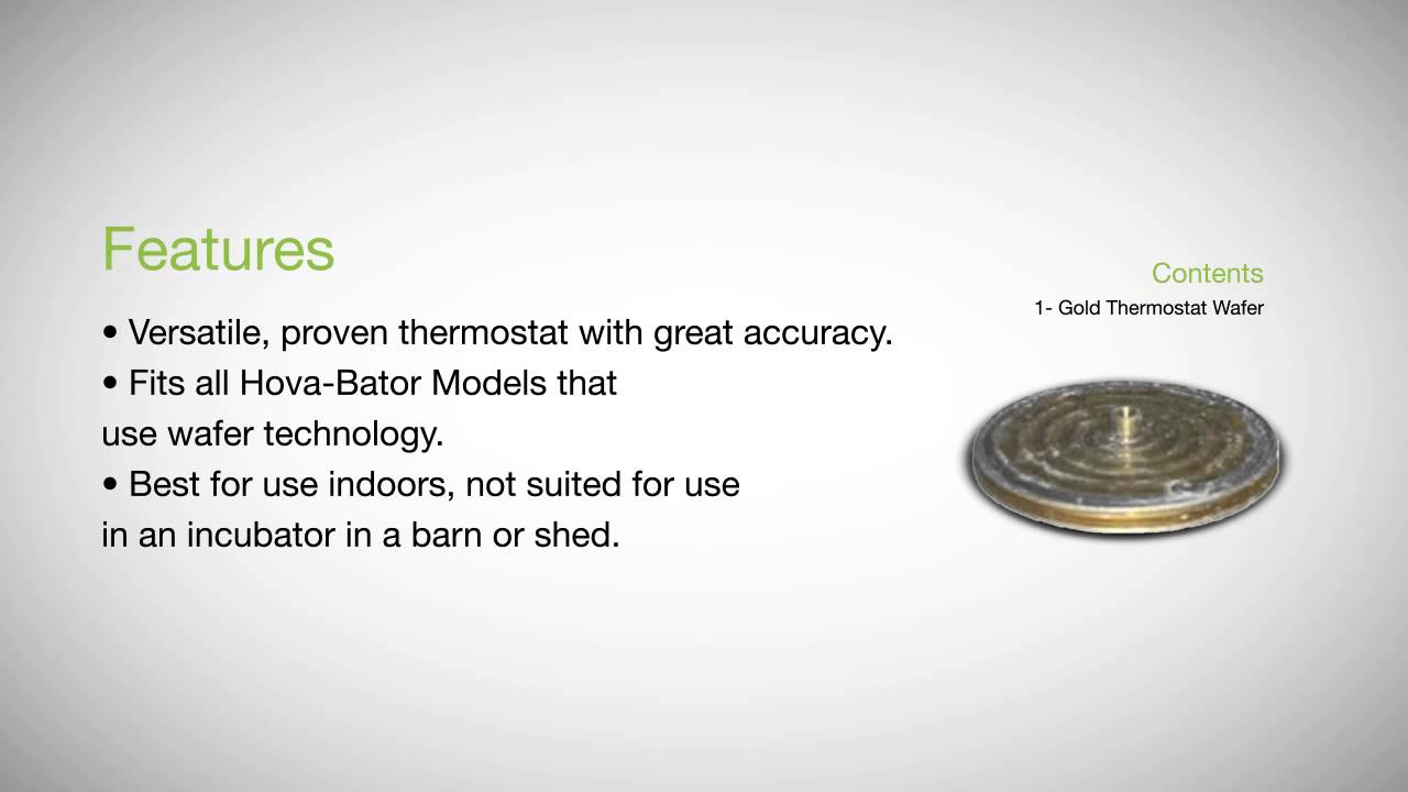 Wiring Diagram For Wafer Thermostat Vacuum Forming Get Domain Pictures Getdomainvidscom Hovabator 3007 Youtube